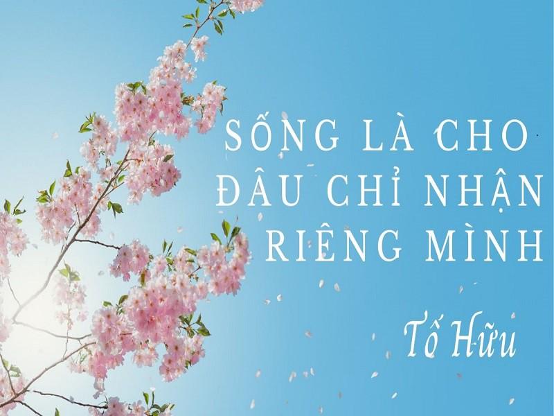 Lòng ích kỷ – thói xấu giết chết con người – Đồng Hành Việt Online ->